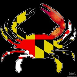 Shore Redneck MD Steamed Hybrid Crab Decal