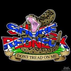 Shore Redneck Don't Tread on Me Worn Dixie Decal