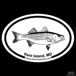 Shore Redneck Striped Bass Sketch Kent Island MD Oval
