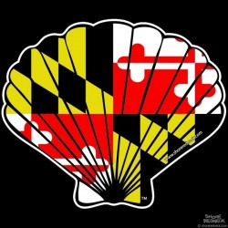 Maryland Flag Fan Shell Decal