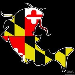Shore Redneck Maryland Catfish Decal